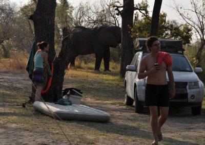 Botswana - Okavango - camping site