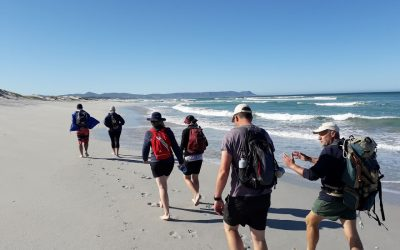 Hermanus Overstrand Beach Walk