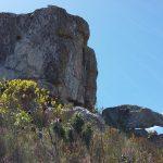 Fernkloof Hike