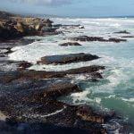 Whale-trail-trek-hike-De-Hoop-reserve-whale trail-de-hoop-reserve-calcrete reefs-whale-Whale trails tidal pools