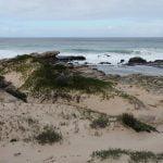 Whale-trail-trek-hike-De-Hoop-reserve-whale trail-de-hoop-reserve-calcrete reefs-whale-Whale-trail-dunes