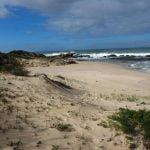 Whale-trail-trek-hike-De-Hoop-reserve-whale trail, de hoop reserve