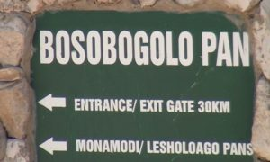 bosobologo sign