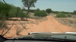 Botswana-Mabuasehube-Nossob-4-X-4-Eco-Trail-sand-thick-sand
