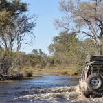 Off-road African Safari