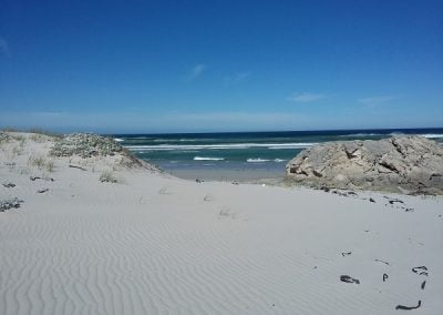 Pristine Walkerbay beach