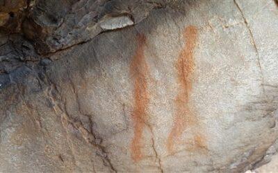 Rock Art in Fernkloof